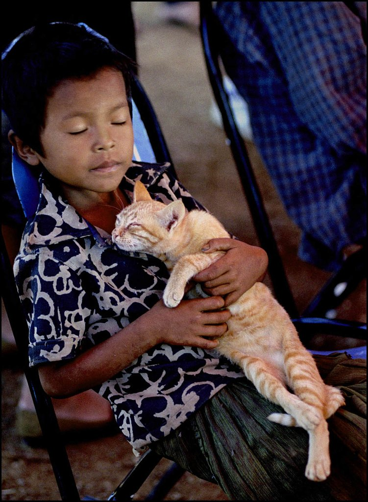 'Cat Nap' Thai-Cambodian Border